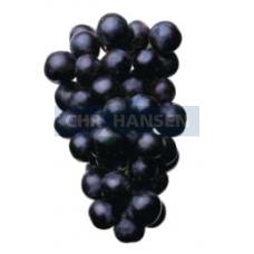 Экстракты смородины, бузины, винограда, батата: